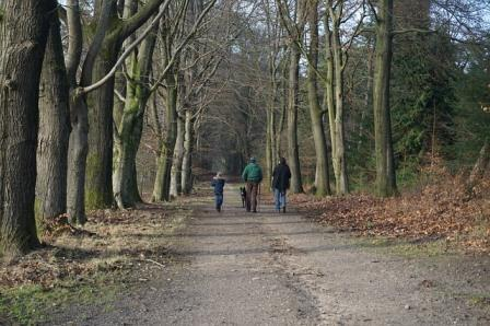 Go for a winter walk – stress free Christmas tip 11